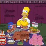 homer-daily-food-intake