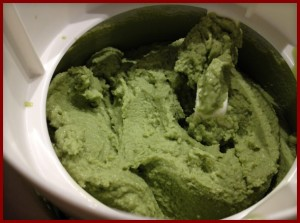 NC-Basil-Frozen-Yogurt-in-Maker